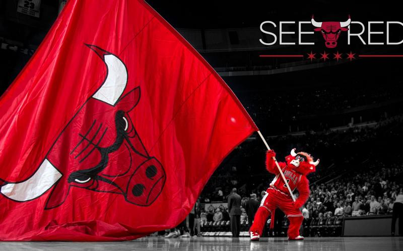 Chicago Bulls Flag Logo